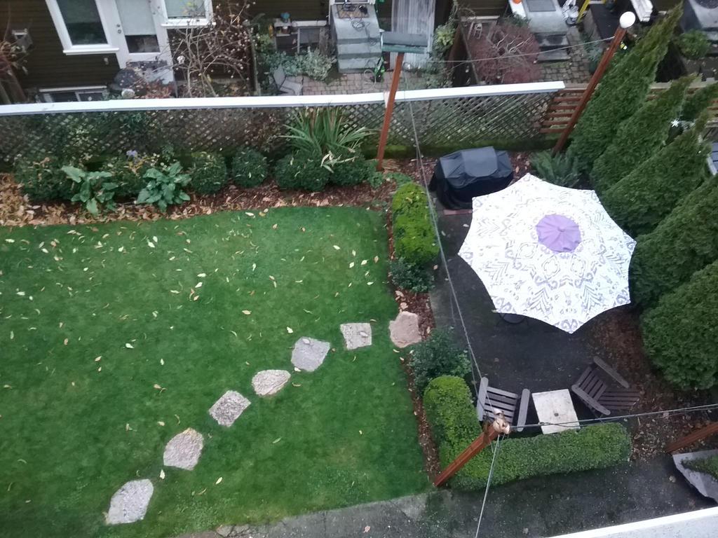 Backyard from Deck